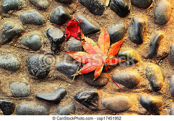Red maple leaves on a stone floor. - csp17451952