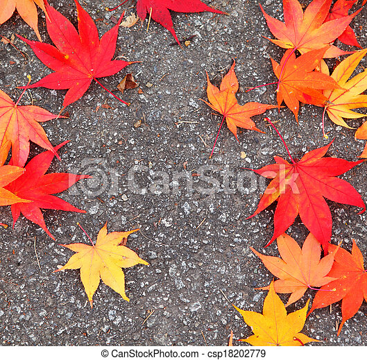 Red maple leaves - csp18202779