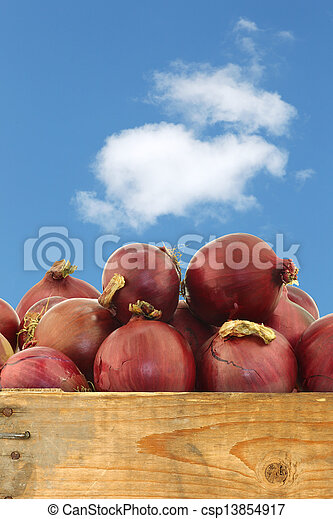 red onions in a wooden crate - csp13854917