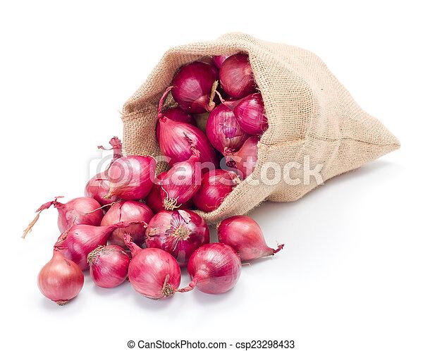 Red onions in burlap sack - csp23298433