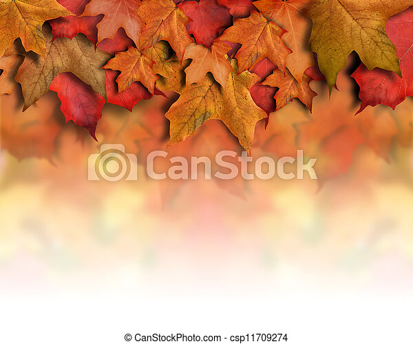 Red Orange Fall Leaves Background Border - csp11709274