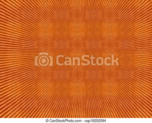 Red orange grunge vintage pattern wallpaper background - csp19252094