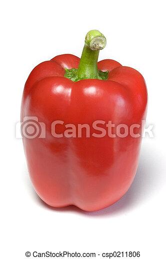 Red Pepper - csp0211806