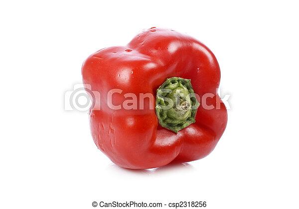 Red pepper - csp2318256