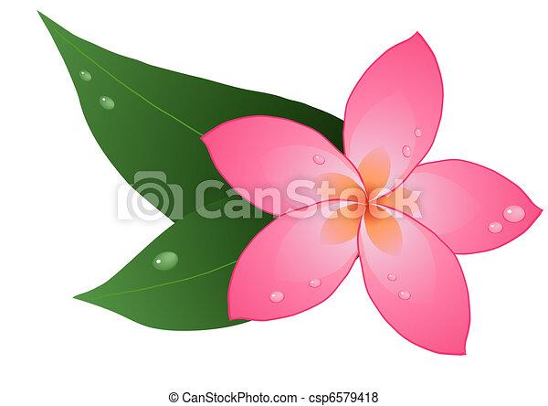 plumeria illustrations and clip art 3 036 plumeria royalty free rh canstockphoto com hawaiian plumeria clip art plumeria flower clip art