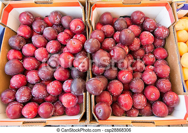 Red plums - csp28868306