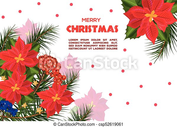 Christmas Card Background.Red Poinsettia Flowers Christmas Card Vector Retro Festive Backgrounds