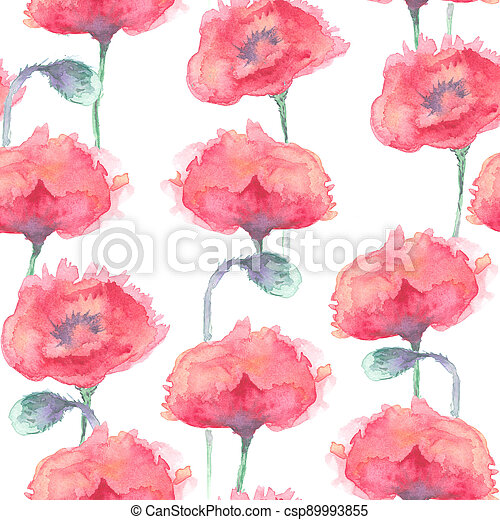 Red poppies background. - csp89993855