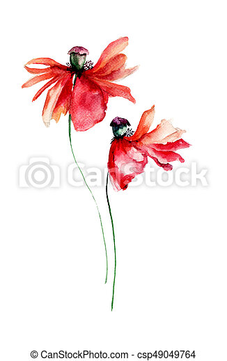 Red poppies flowers with petal fall off watercolor illustration red poppies flowers with petal fall off csp49049764 mightylinksfo