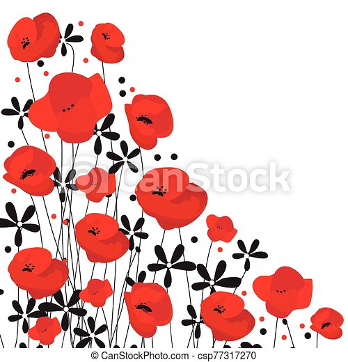 Red Poppy flower isolated on white background, vector illustration - csp77317270