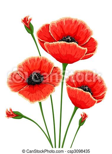 Red poppy flowers illustration stock illustrations search red poppy flowers csp3098435 mightylinksfo