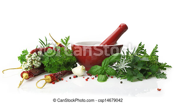 Red porcelain mortar and pestle with fresh herbs - csp14679042