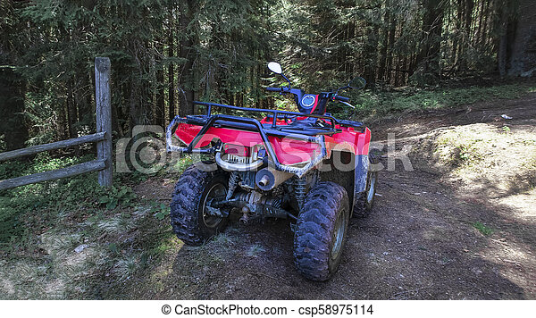 red quad bike in the forest, close-up - csp58975114