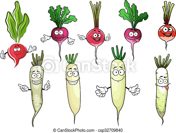 Image result for total, ripe Russian Radish