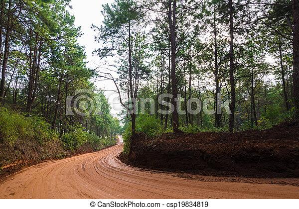 red road - csp19834819