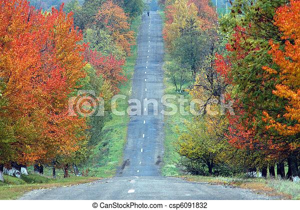 Red road - csp6091832