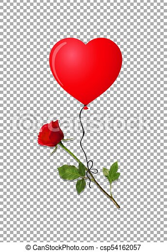 red rose and heart shaped balloon on transparent background flower