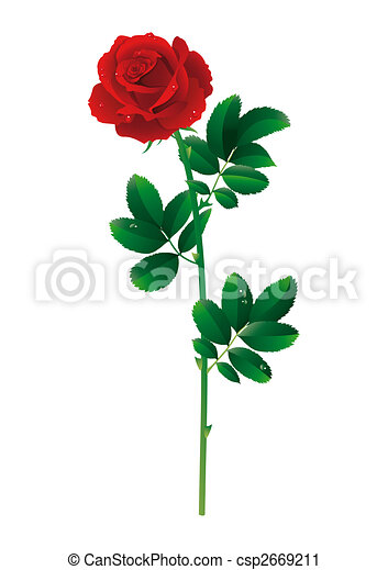 Single Red Rose Clip Art