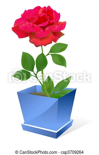 Drawing of red rose flower in pot vector red rose flower in pot red rose flower in pot csp3709264 ccuart Image collections