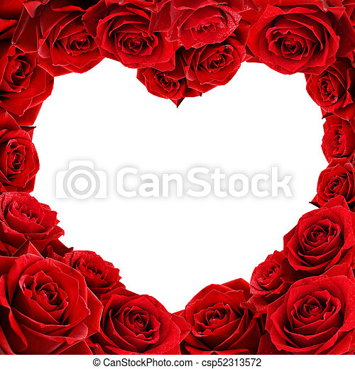 red rose flowers heart shape frame isolated on white