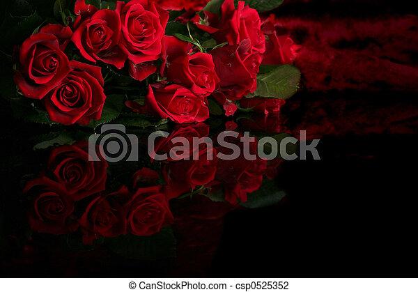 Red rose - csp0525352