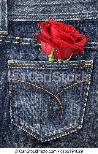 Red rose - csp6194629