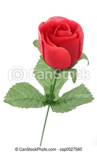 red rose - csp0527560