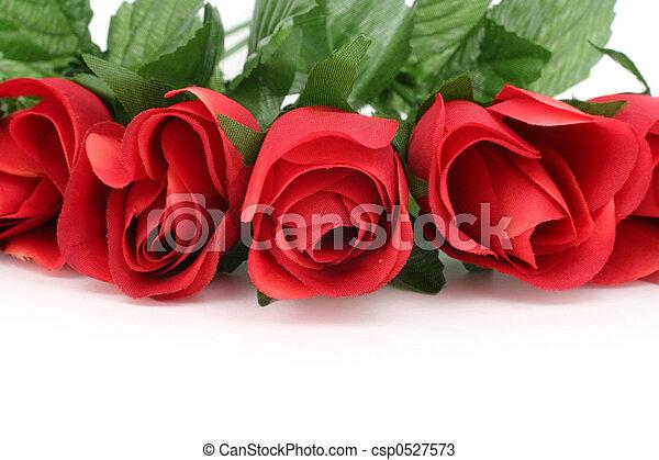 red rose - csp0527573