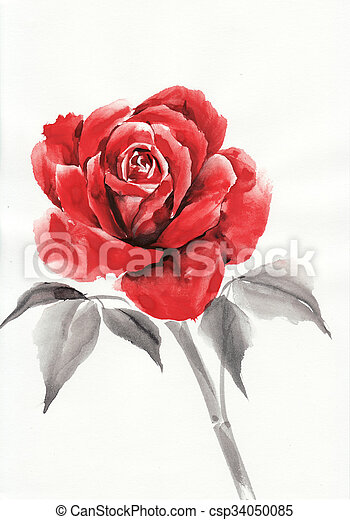 Red Rose Watercolor Painting Picture Csp34050085