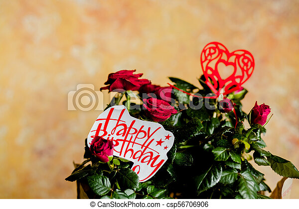 Red Roses Flowers With Heart On Wooden Backgroundbirthday Card Beautiful Rosered And Message Happy Birthday