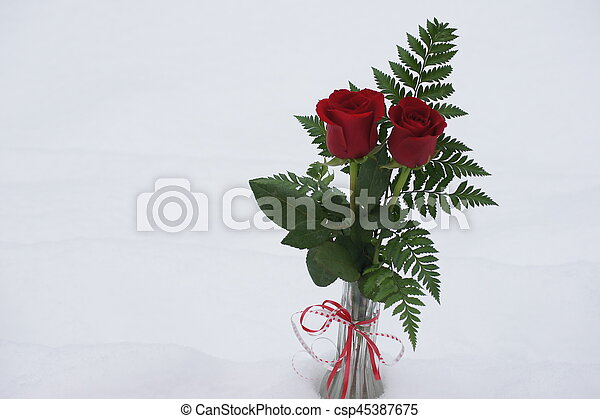 Red Roses In A Vase Red Rose With Foliage In A Vase White Background