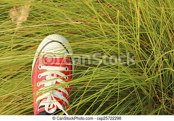 Red shoes with a background of green grass. - csp25722298