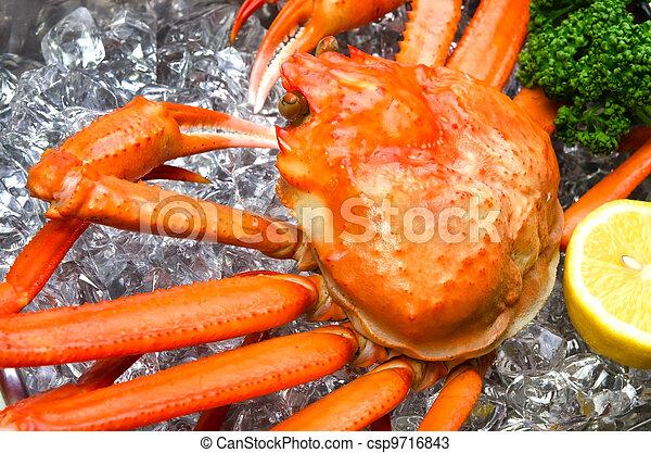 red snow crab - csp9716843