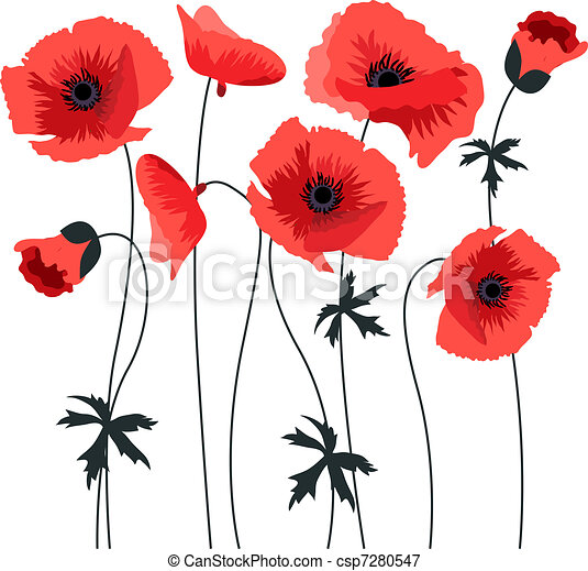 Red stylized poppy  - csp7280547