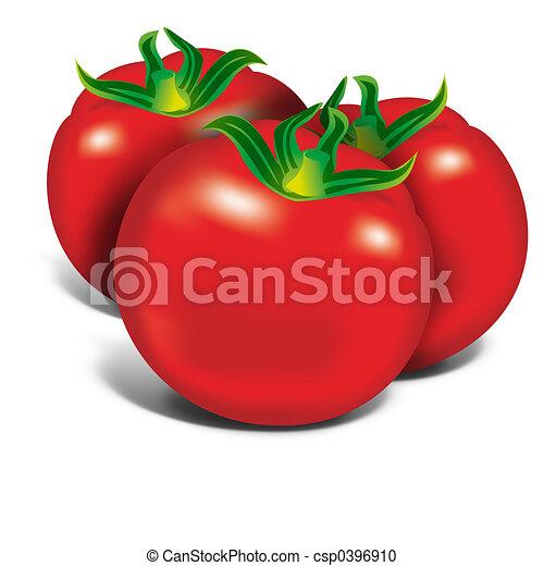 Red Tomatos - csp0396910