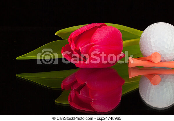 Red tulip and golf equipments  - csp24748965