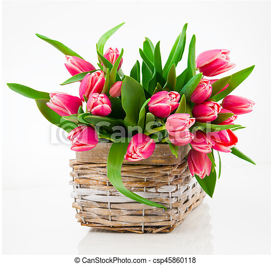 Red tulip flowers in a basket on a white background - csp45860118