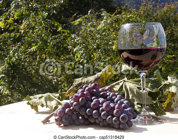 red wine and grapes - csp51318429