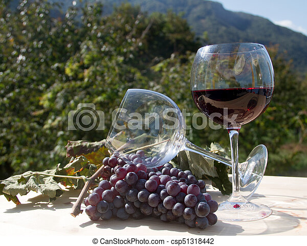 red wine and grapes - csp51318442