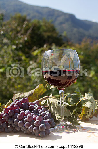 red wine and grapes - csp51412296