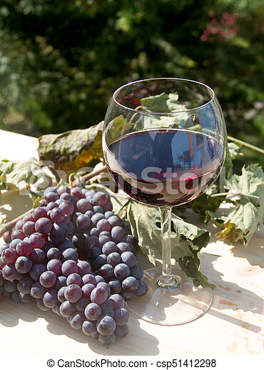 red wine and grapes - csp51412298