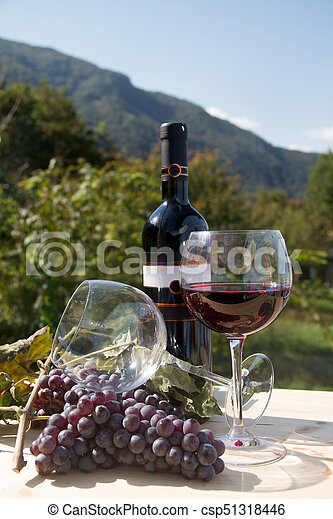 Red wine bottle with wineglasses - csp51318446