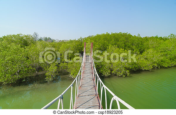 Red wooden bridge to a natural forest with blue sky, Thailand - csp18923205