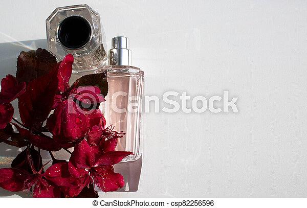 redevance, fleurir, fleurs, printemps, mai, avril, pourpre, pomme, bouteille rouge, season., pendula, malus, arbres, variété, fleur, parfum - csp82256596
