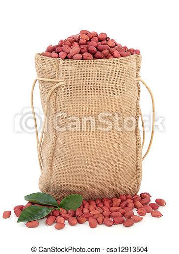 Redskin Peanuts - csp12913504