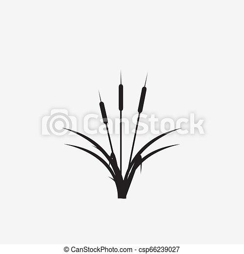 reeds illustration vector icon - csp66239027