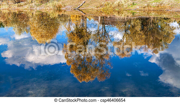 reflected in a forest lake autumn trees - csp46406654