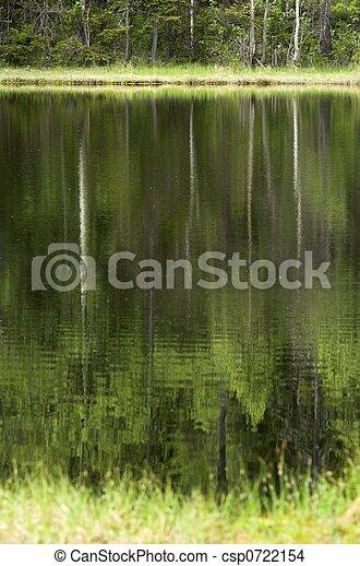 Reflecting Trees - csp0722154