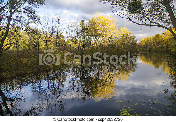 Reflection of autumn forest in a lake - csp42032726