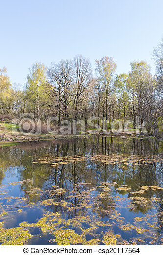 reflections in the water - csp20117564